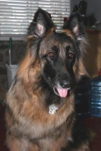 dakota-2007