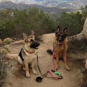 Iron Mtn Hike