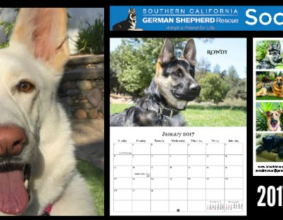2017 Calendars Available Now!