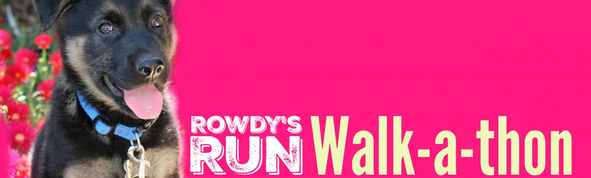 Join us for Rowdy's Run!