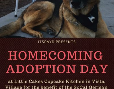Homecoming Adoption Day – by ITSPAYD – April 8!