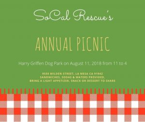 Picnic 2018 Graphic
