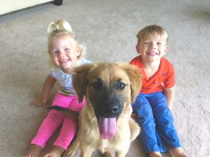 ruby17adopted4