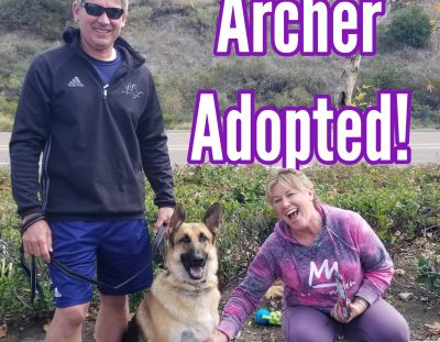 Archer Adopted!