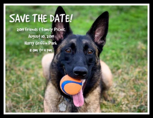 Post Save the Date